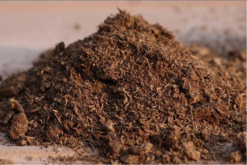 İthal Torf Toprak ile Sağlıklı Bitkiler!